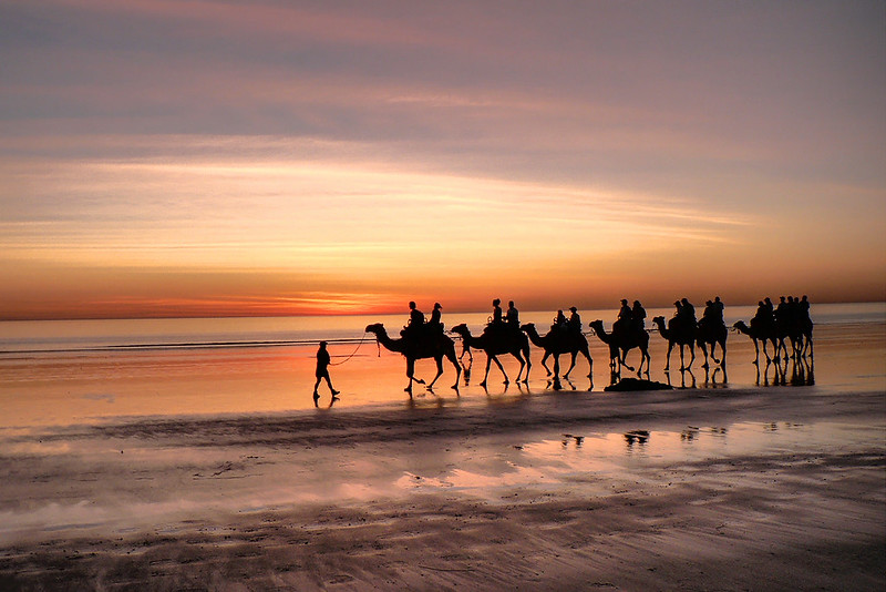 cable beach camels broome